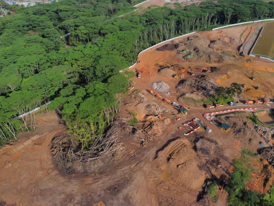 How was Kranji Woodland cleared by mistake?