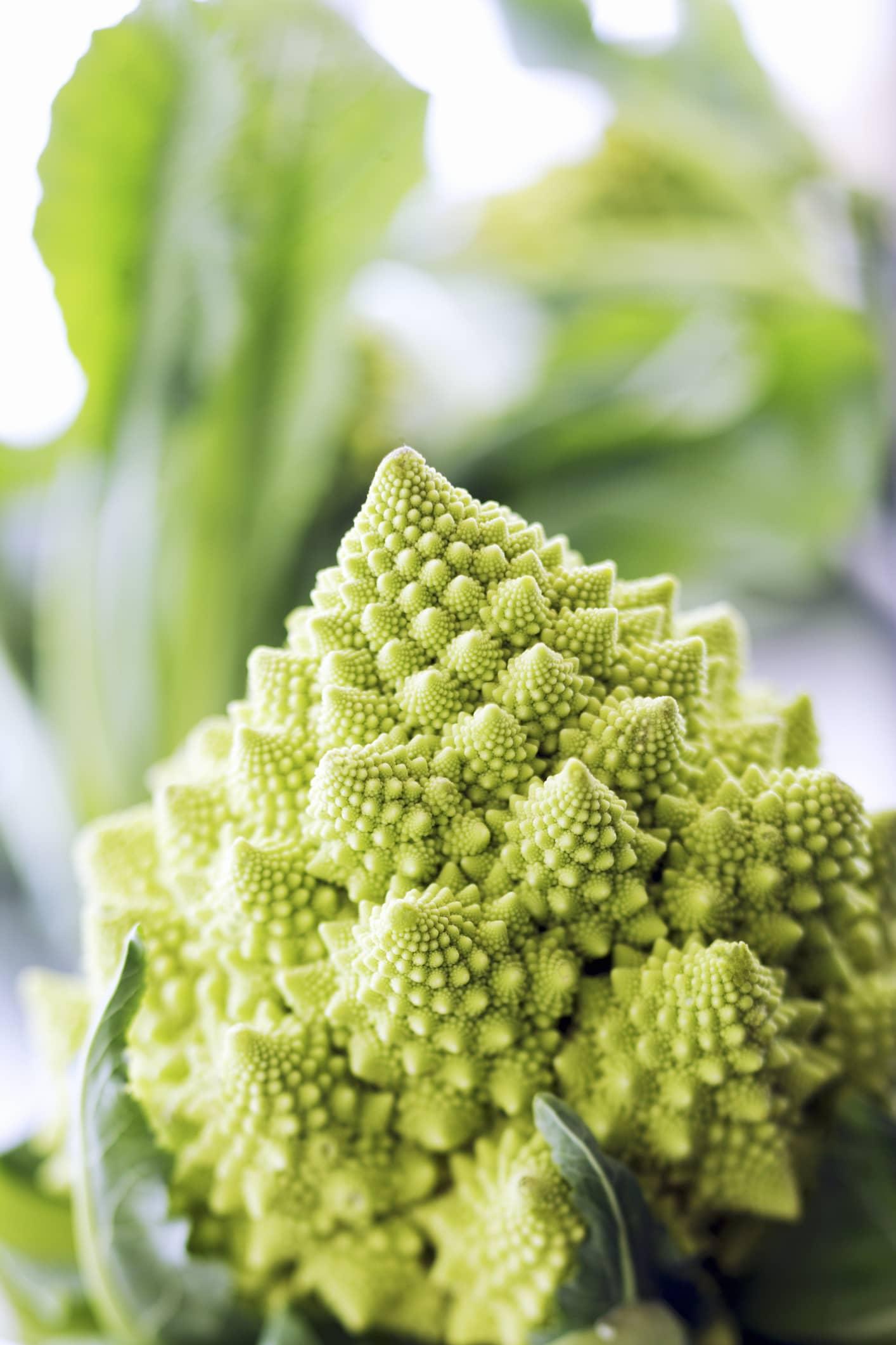 Romanesco broccoli (close-up)
