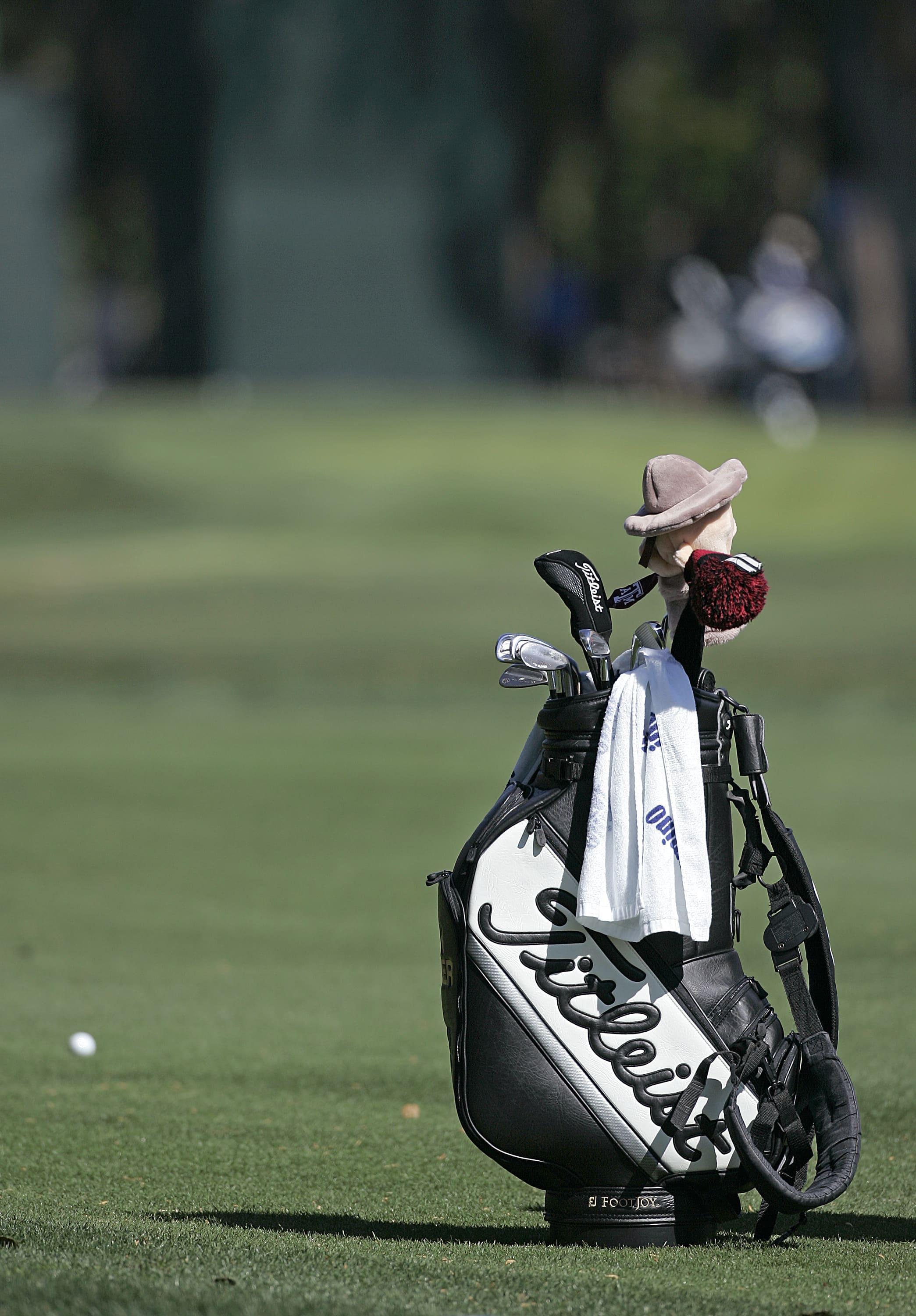 UNITED STATES - MARCH 22:  Titleist bag on the fairway during a practice round for THE PLAYERS Championship held at the TPC Stadium Course in Ponte Vedra Beach, Florida on Wednesday, March 22, 2006.  (Photo by Michael Cohen/Getty Images)
