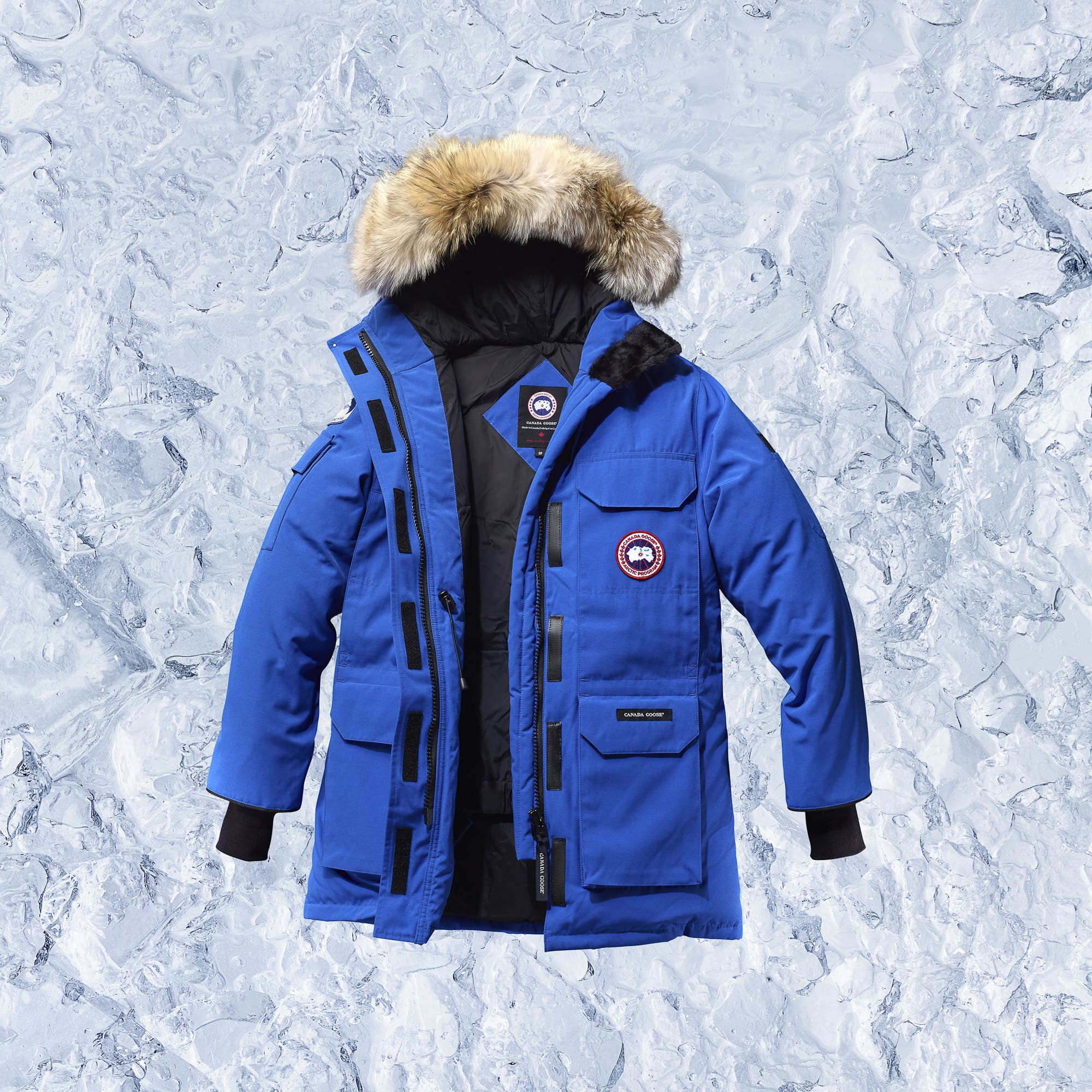 From Arctic To Asphalt: Canada Goose Makes It In Hollywood